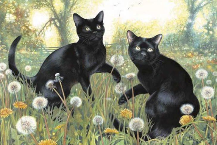 Spring cat painting. Chrissie Snelling