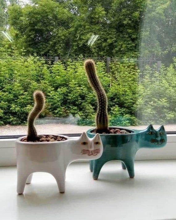 Set of 2 - Cute Cat Ceramic Planters,Succulent Pla