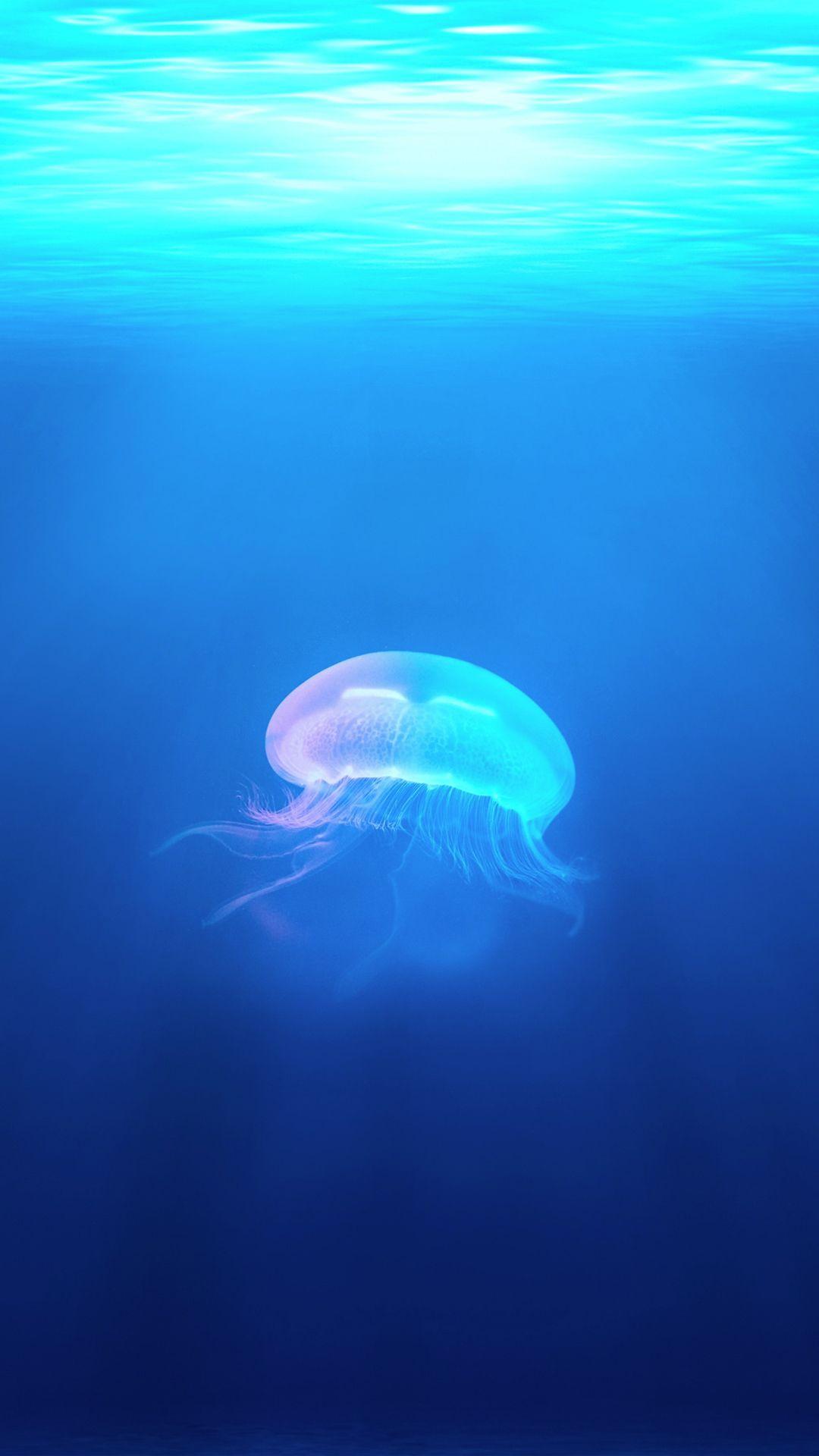 Ocean Jellyfish Surreal Light Iphone 8 Wallpapers Jellyfish