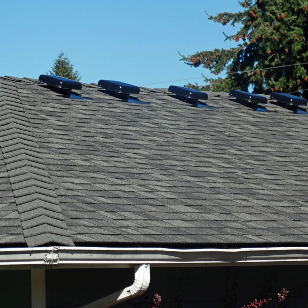 Local Roofers Service And Maintenance Certified Roofing Company Shingle Roof Roofing Roof Repair Roof Maintenance