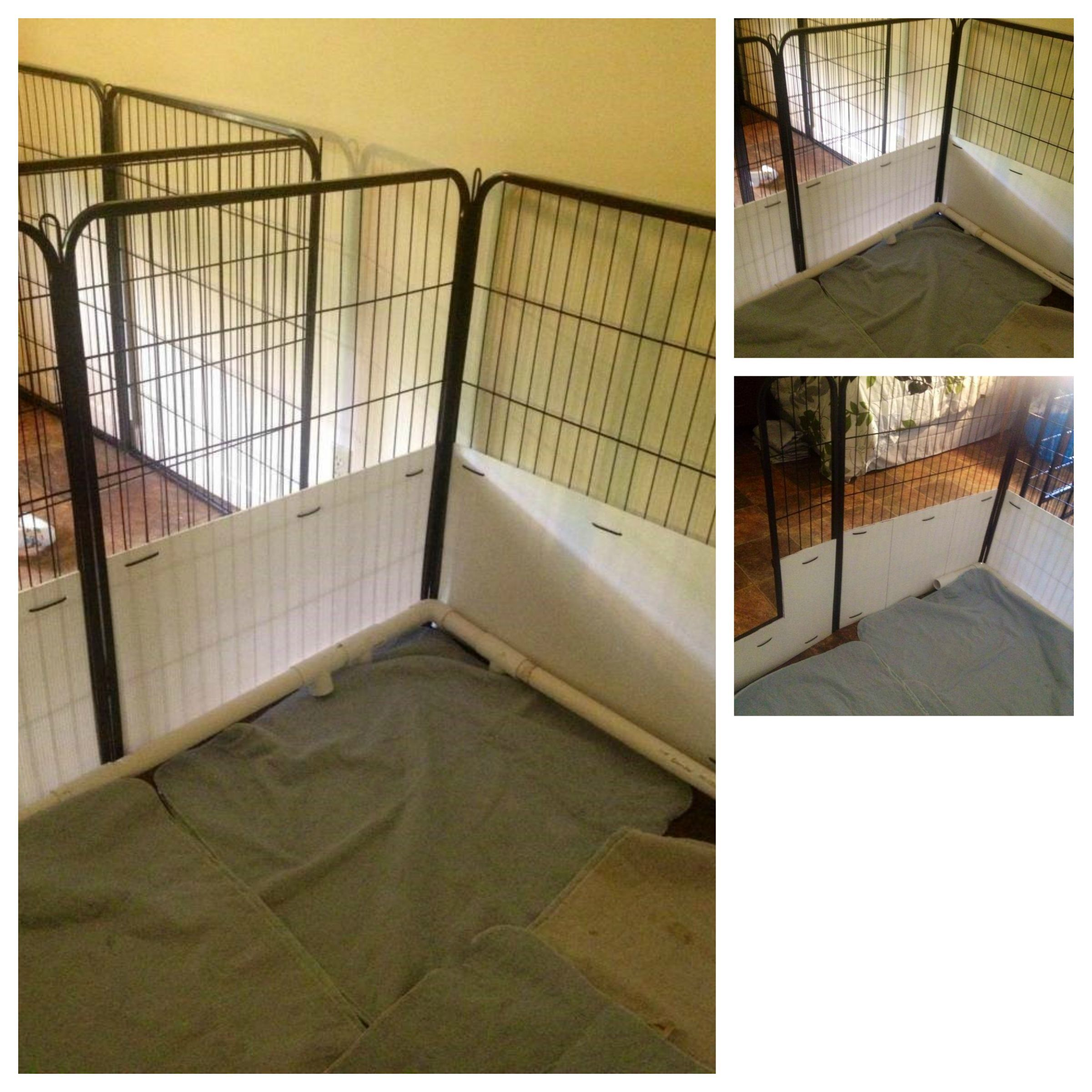How To Convert An 8 Panel Exercise Pen Into A Whelping Box We Used