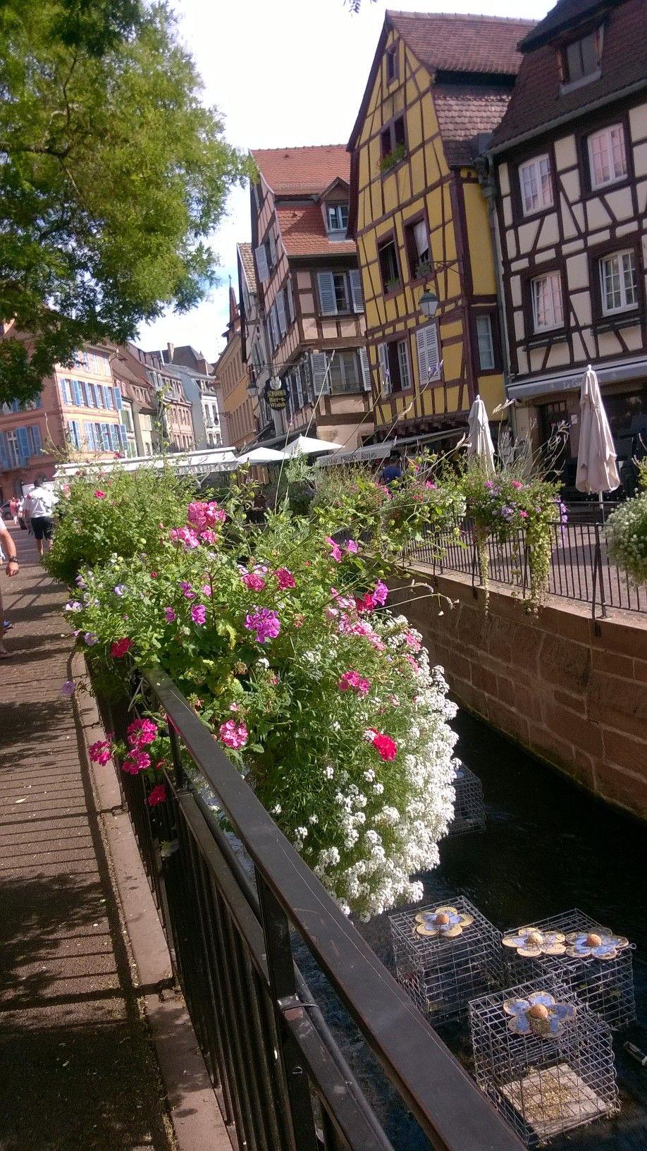 Petit Venice Colmar