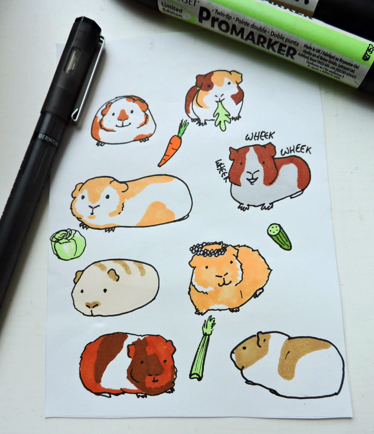 Hand drawn guinea pig stickers//available here