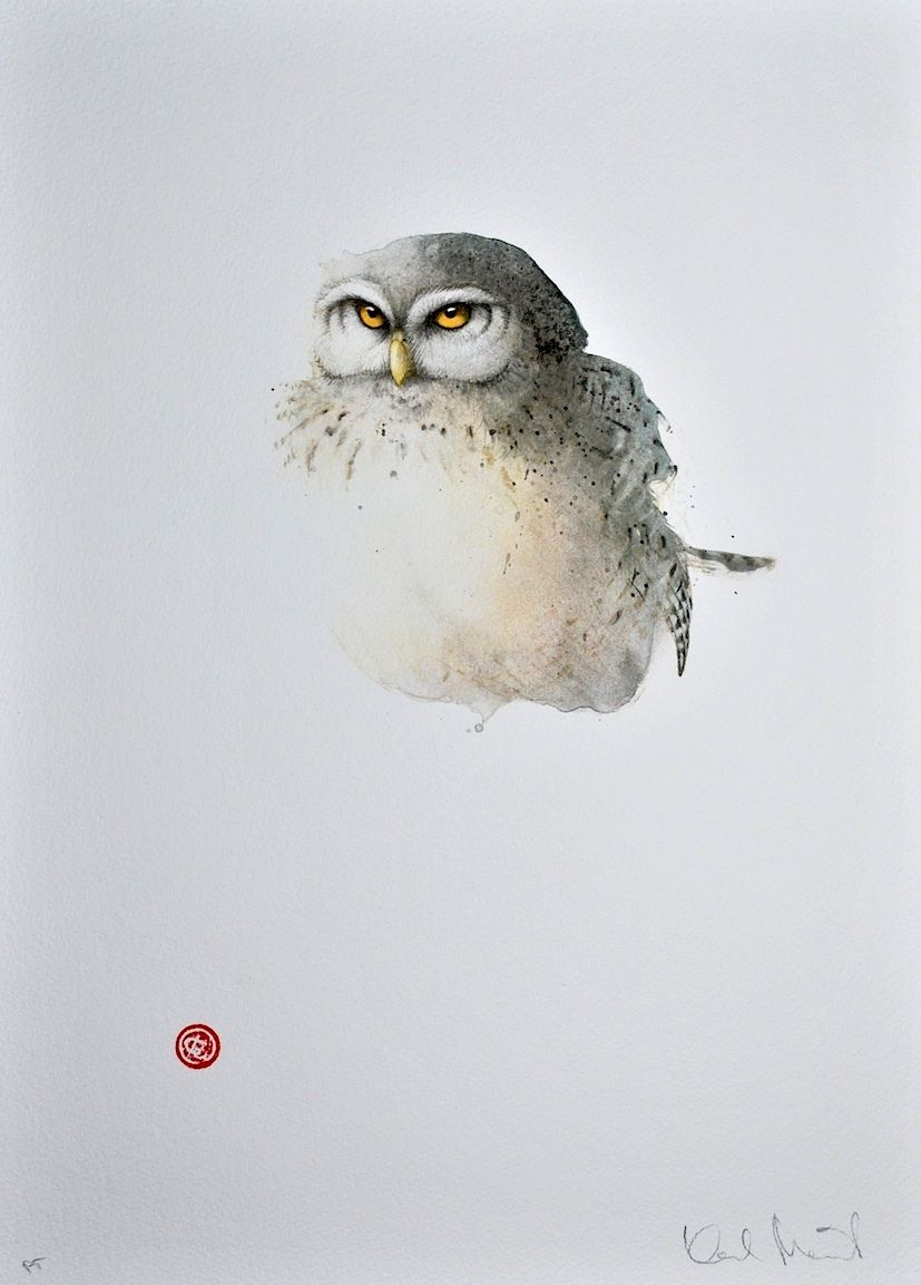 Pygmy Owl by Karl Mårtens - Litografier « Edition Vulfovitch