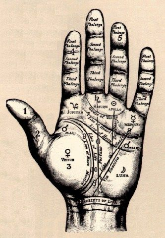 Palmistry Truth Or Hoax Sayings Pinterest Palm Palm Hand
