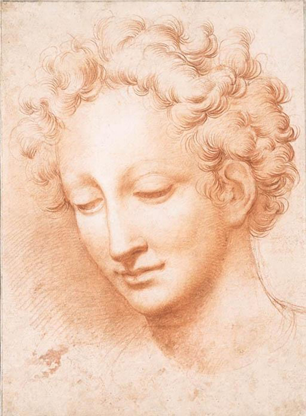 Antonio Campi (1524-1587) The head of a man, looking down (323 x 236 mm)