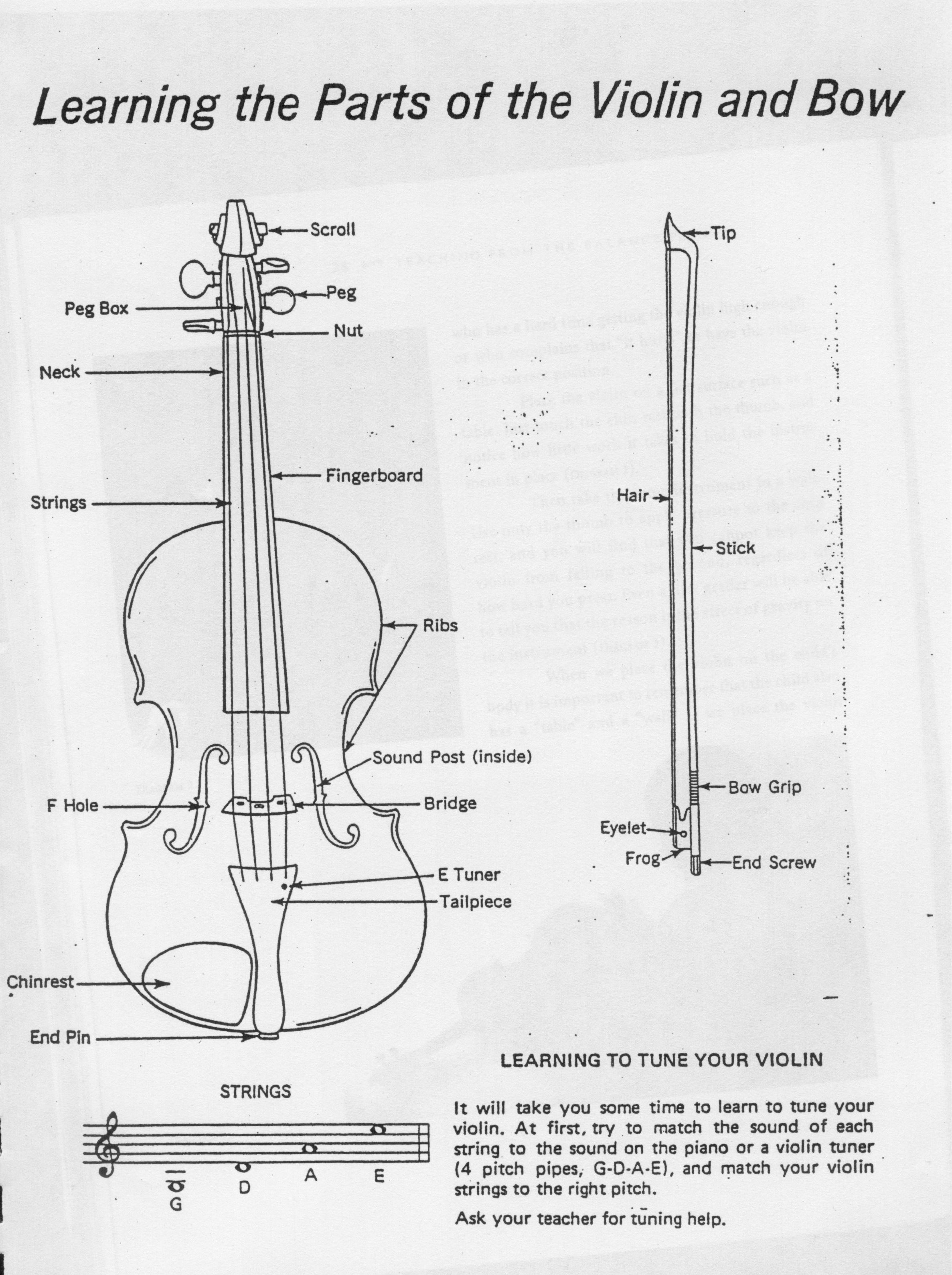 Violin Bow Diagram