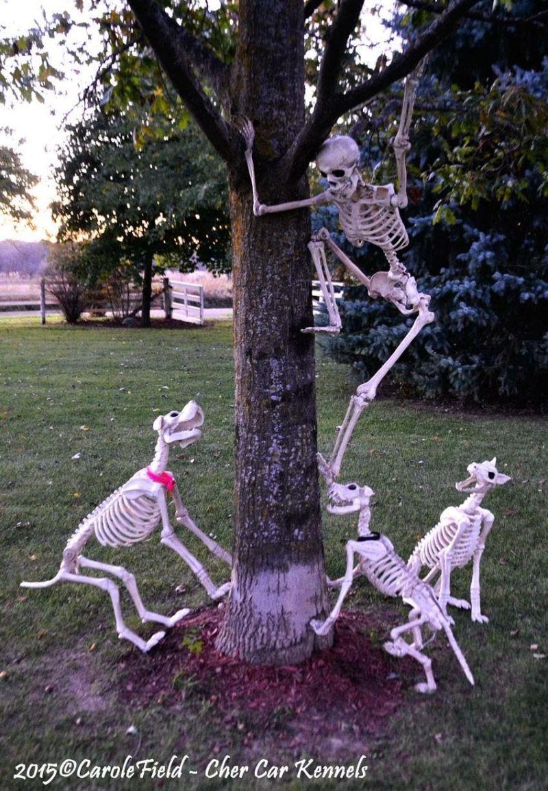 Skeleton Evading Dogs Halloween Display