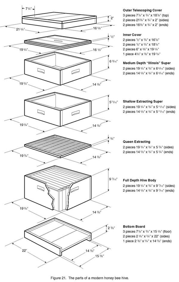 Bee space is important traditional hive parts are made for Beehive plans blueprints