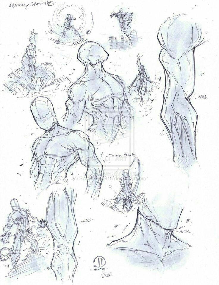 Pin de Susimuroscjlc en Dibu hombre   Pinterest   Anatomía, Dibujo y ...