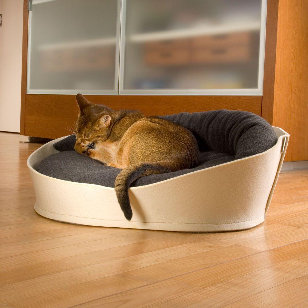 Arena Felt Designer Cat Beds
