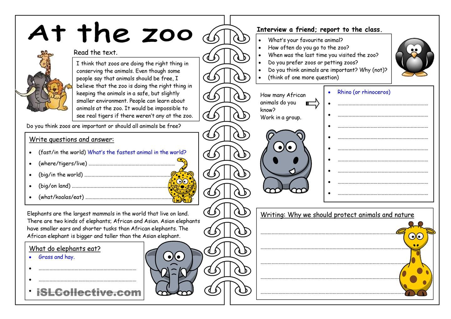 Four Skills Worksheet At The Zoo Worksheet
