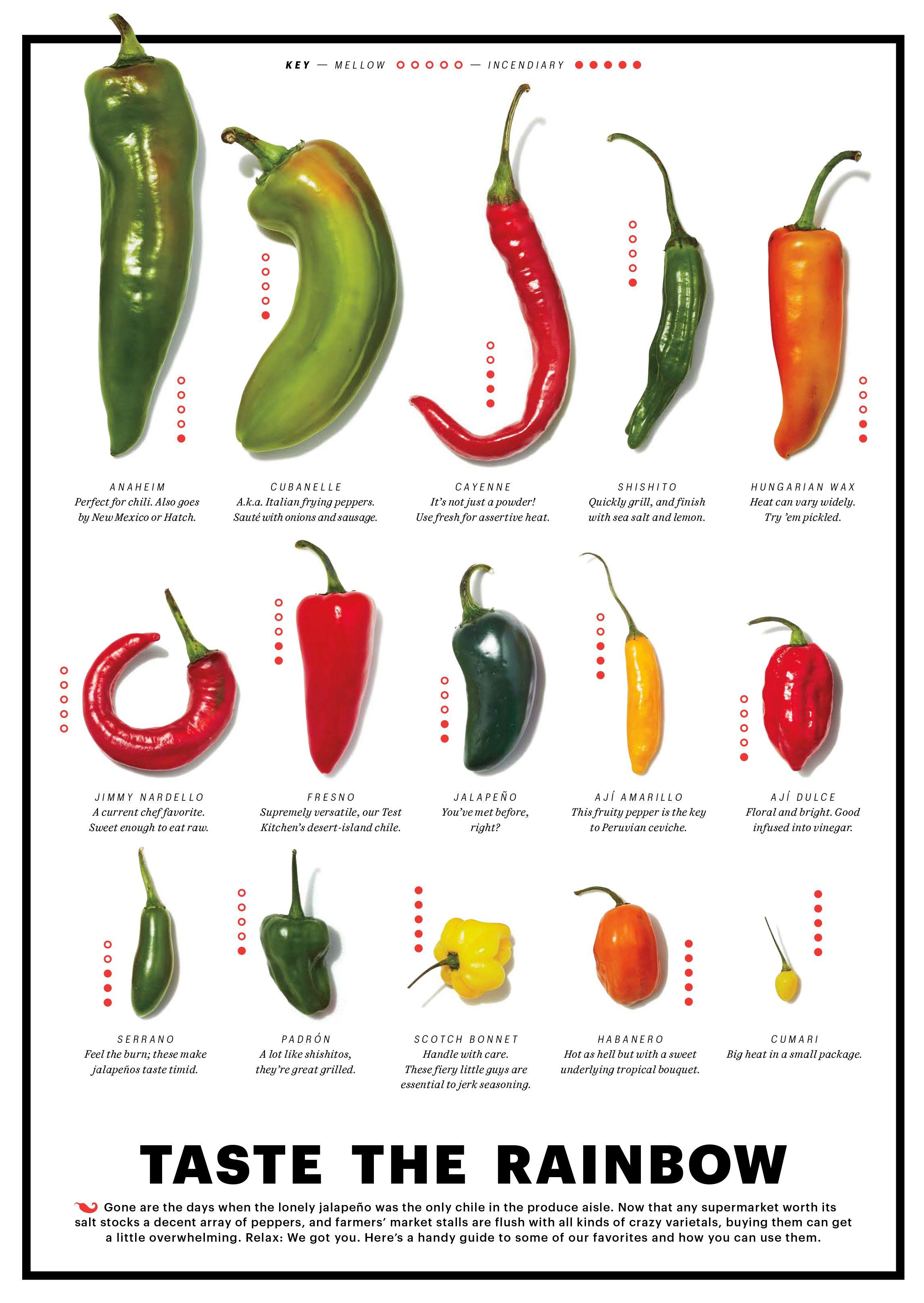 Chile Chart Food Veggie Stuffed Peppers Food Stuffed Hot Peppers