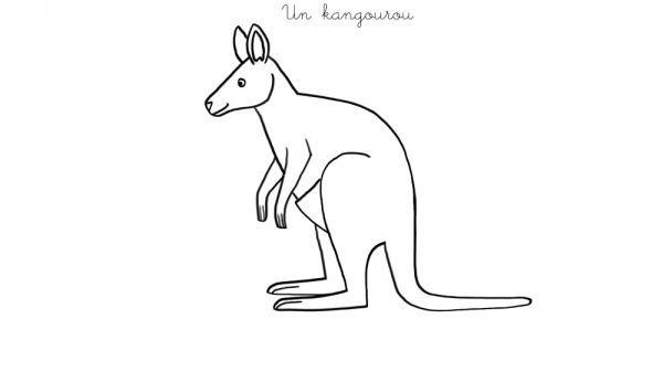 Coloriage Kangourou.Coloriage A Imprimer Un Kangourou Coloriages Coloriage