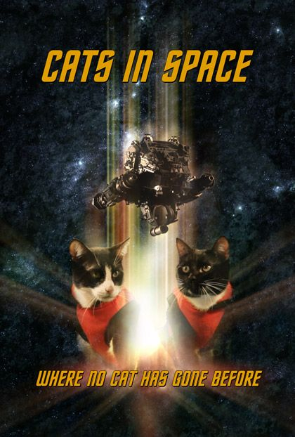 Cats in Space, Short Film Boldly Takes Cats on a Star Trek Mission