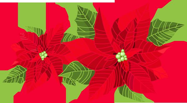 Poinsettia clip art Christmas decorations, Christmas