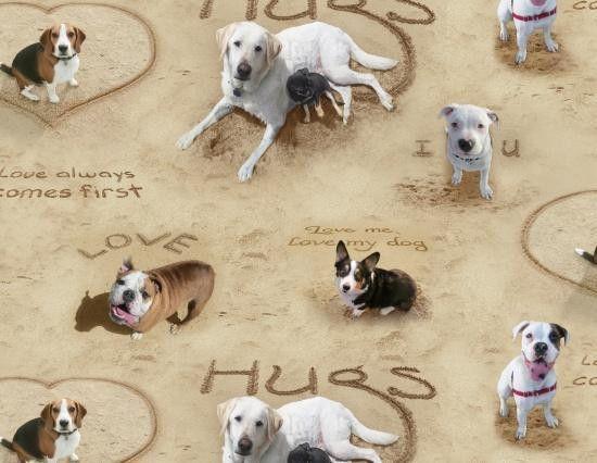 0,50m, Hund, Hunde, I LOVE YOU, Hunde am Strand, Baumwolle