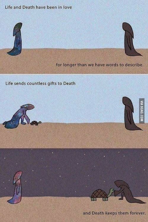 A Romantic Story Life And Death Life Funny Memes