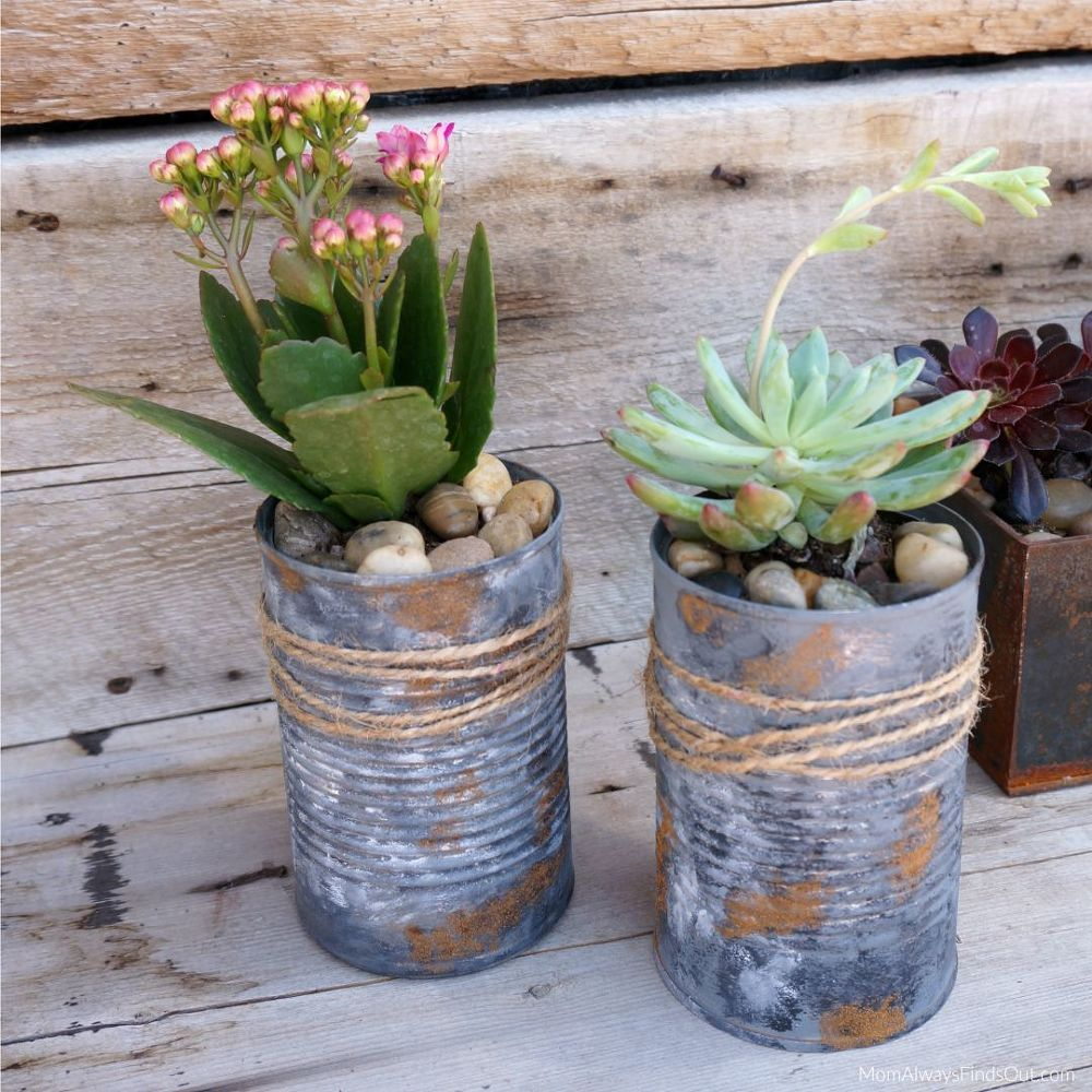 15 Cute Ways To Turn Tin Cans Into Planters Diy Planters