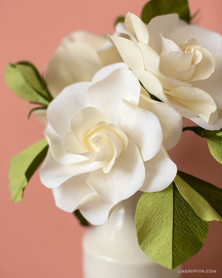 Craft A Handmade Crepe Paper Gardenia Video Tutorial Crafts