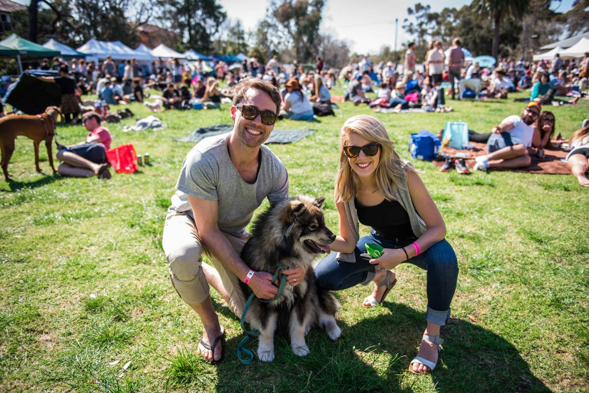 Dogapalooza Melbourne 2016 October 9 Australian Dog Lover This Dog Friendly Music Festival Is Returning To The Dog Rescue Groups Dog Friends Dogs Day Out