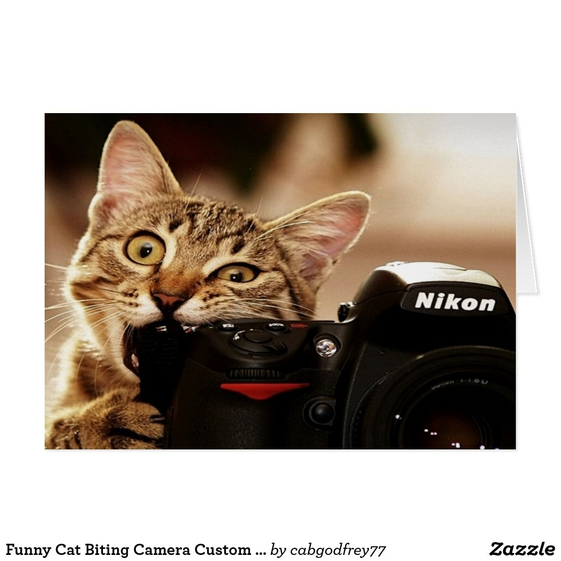 Funny Cat Biting Camera Custom Greeting Card