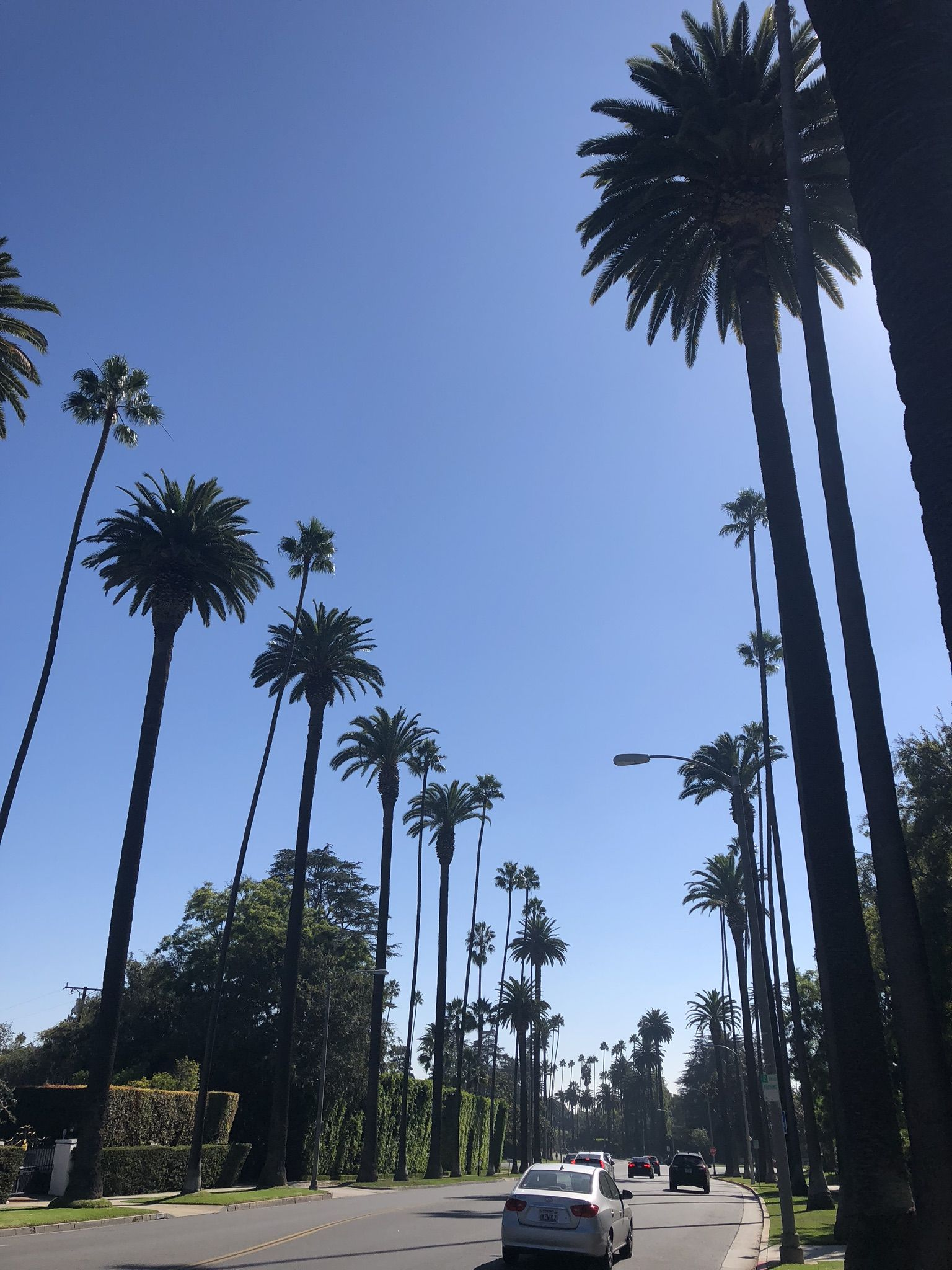 Walking Along Sunset Boulevard In Beverly Hills, LA In