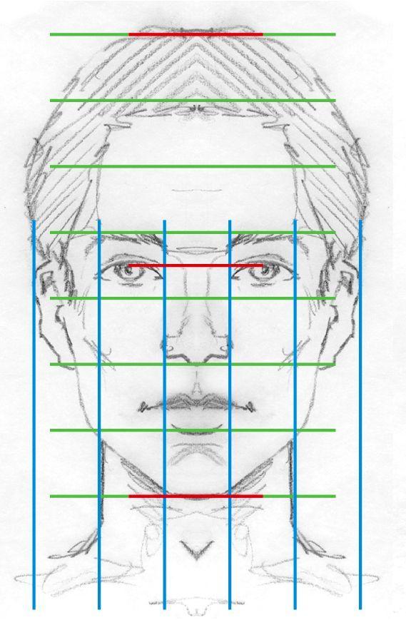 Gesicht-Proportionen 2191 | zeichnen | Pinterest | Drawings ...