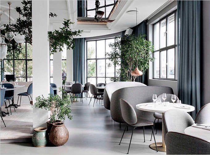 A Danish Scandinavian Style Restaurant Cotton Casa Restaurant Interior Restaurant Decor Restaurant Interior Design