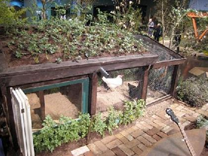 Living Roofs Bottle Wall Greenhouse Ideas Green Animal House