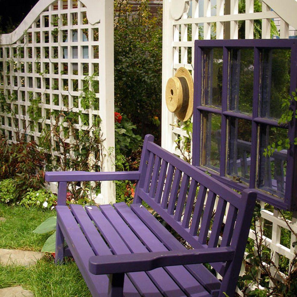 Creating Backyard Privacy | Backyard privacy, Easy ...