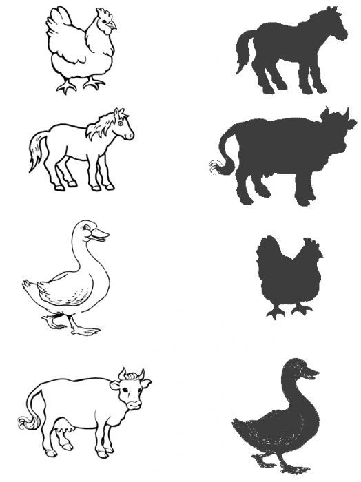 animal shadow matching worksheet 2 – Kindergarten Matching Worksheets