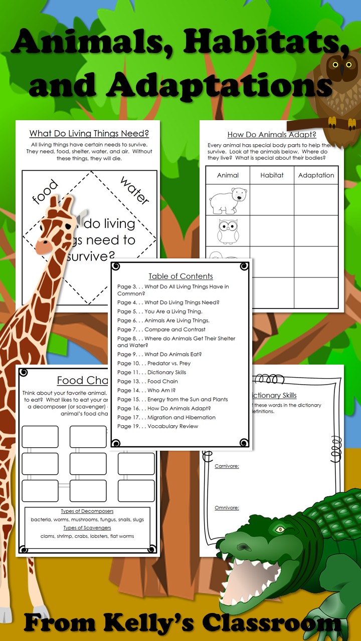 small resolution of Store: Kelly-Wilson-8750 - TeachersPayTeachers.com   Elementary science