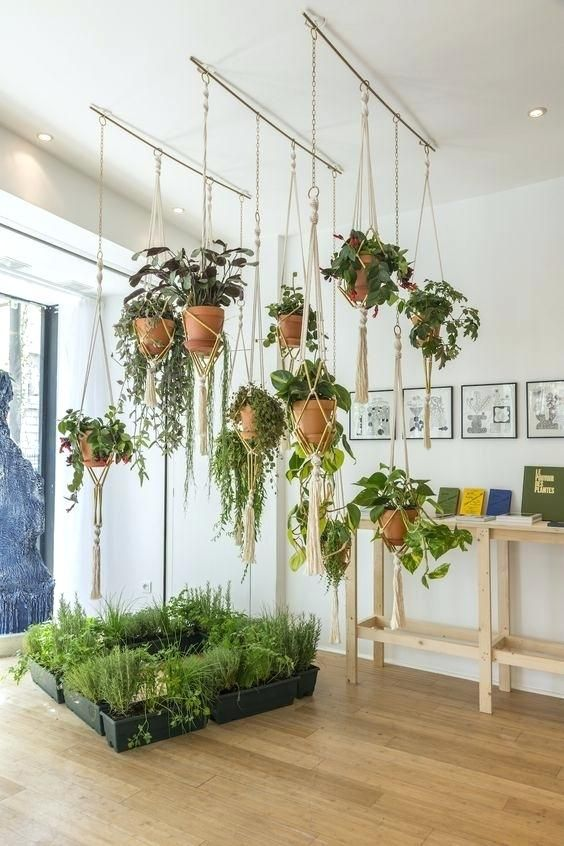 How To Hang Plants From Ceiling Planters Outstanding S Hooks For