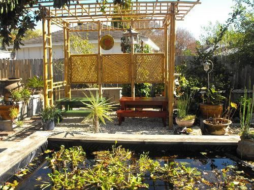 Exotic Ponds And Patios | Exotic Tropical Patio Decor