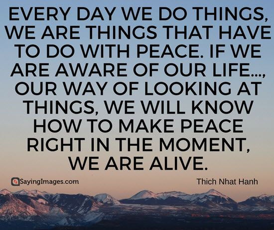 Quotes On Peace Peace Quotes  Peaceful Quotation  Quotation Peace And Mindfulness .