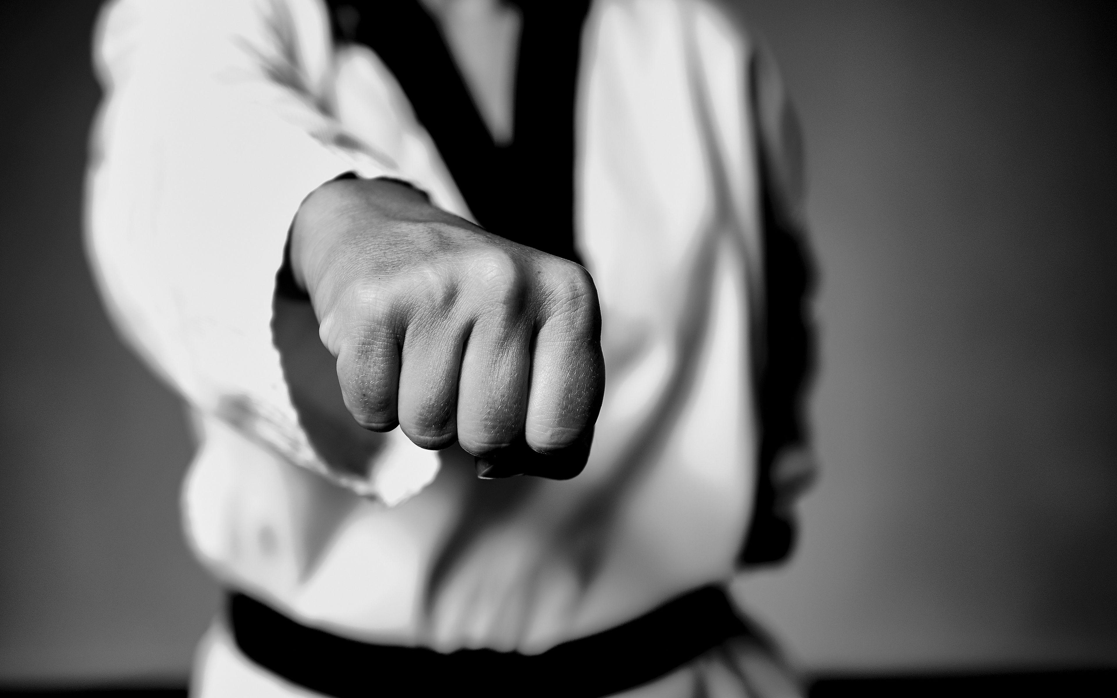 Taekwondo Wallpapers (19 Wallpapers) – HD Wallpapers ...