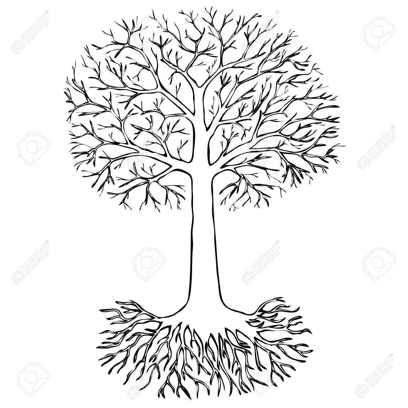 árbol Con Raíces En El Fondo Blanco Dibujo Ilustraciones