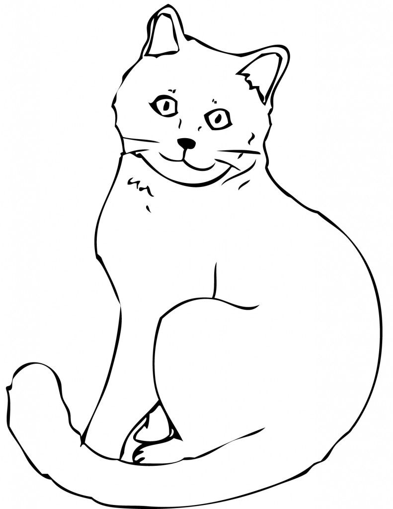 Real Cats Coloring Pages Cat coloring pages for | Patterns ...