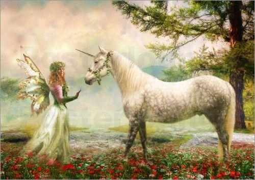 fantasy unicorn pics  unicorn pictures unicorn and