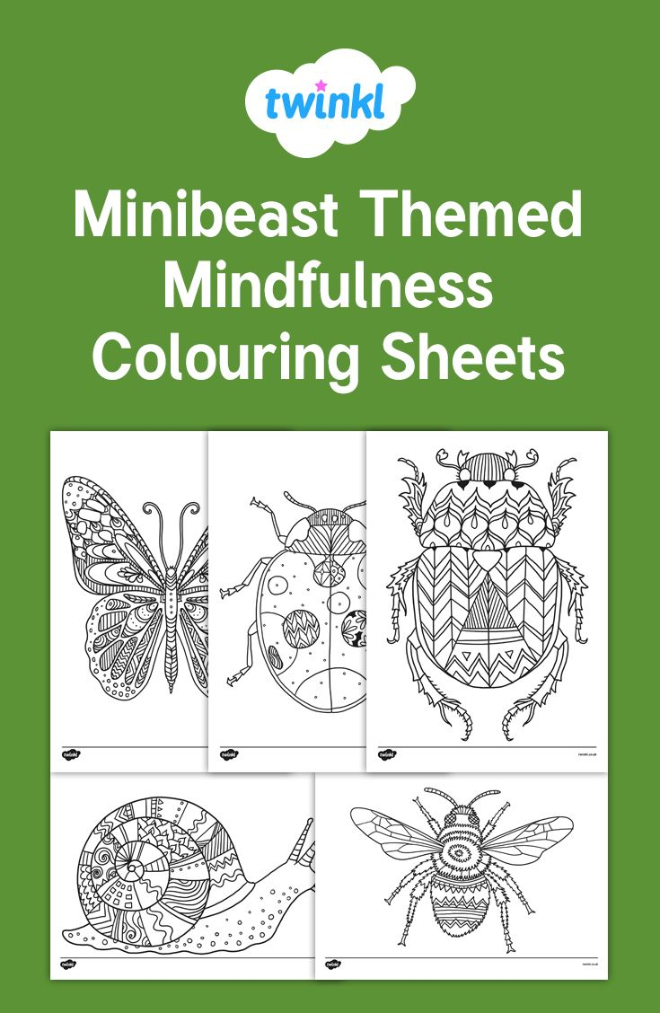 Minibeast Themed Mindfulness Colouring Sheets Twinkl Mindfulness Colouring Mindfulness Colouring Sheets Coloring Sheets