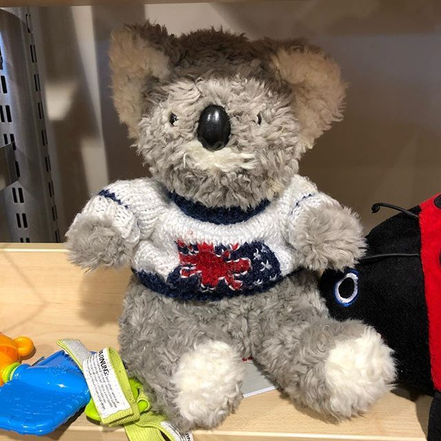 #foundincharityshop #koala #australia #WPH_109 #WPH_109 ...