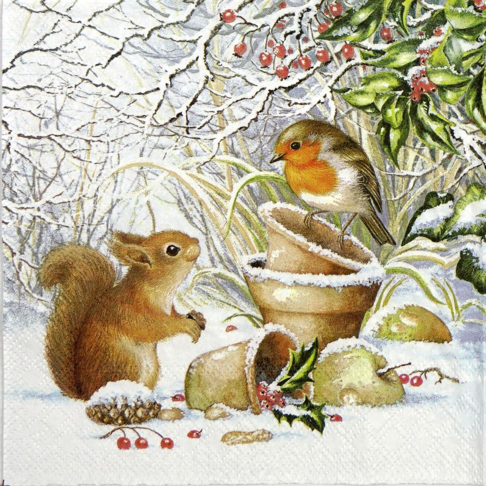 4x Paper Napkins for Decoupage Craft Squirrel/'s Lunch Party
