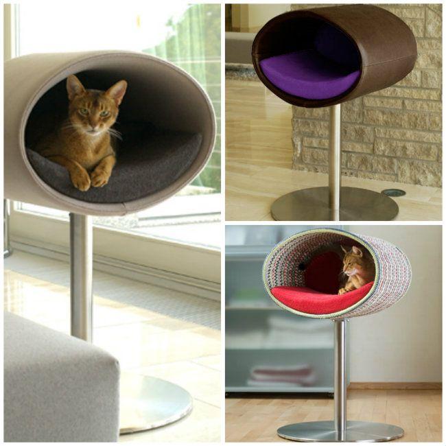 Camas elevadas para gatos cats pinterest cat - Camas para gatos ...