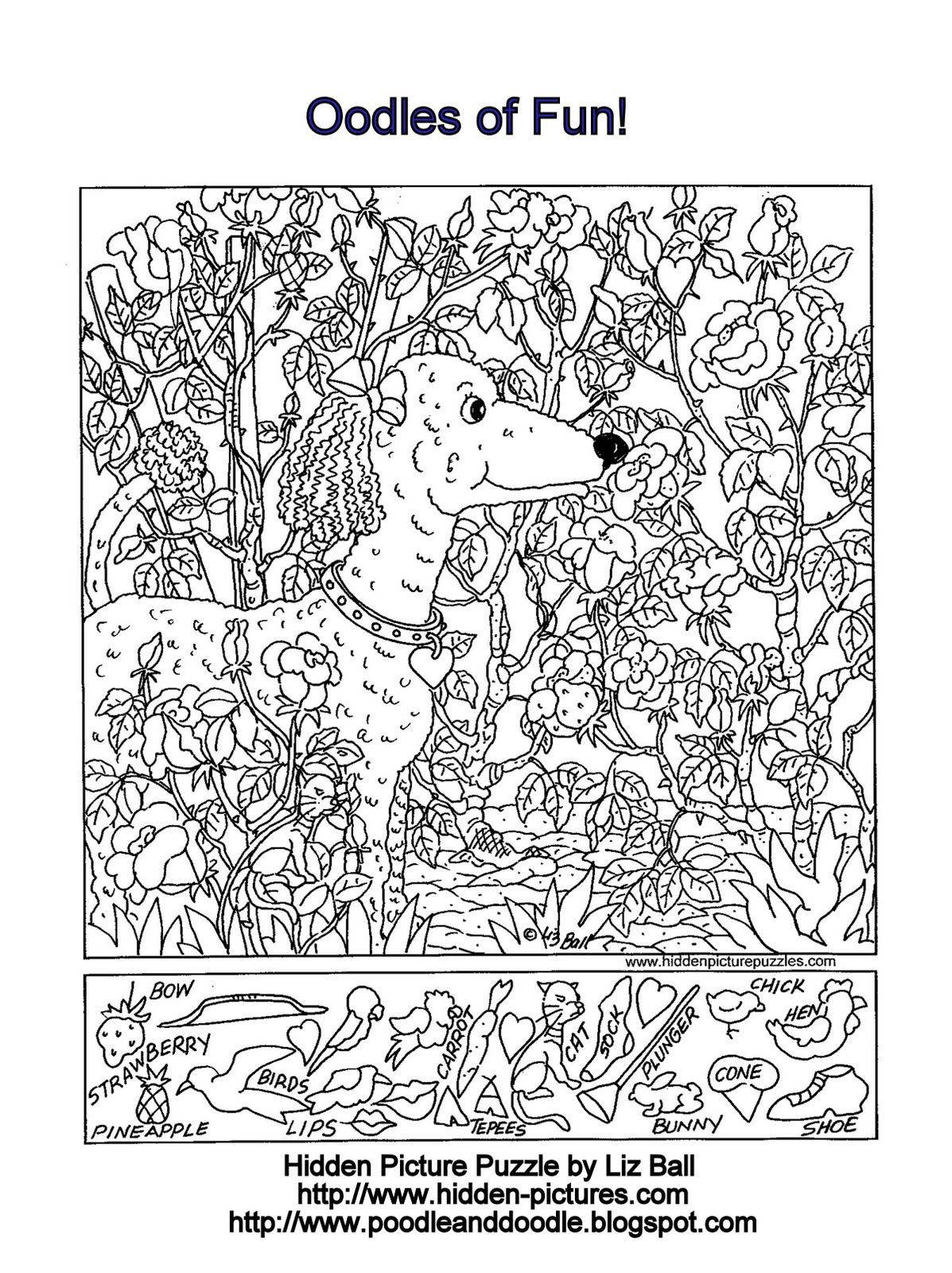 Hidden Picture Puzzle And Coloring Page Featuring A Poodle