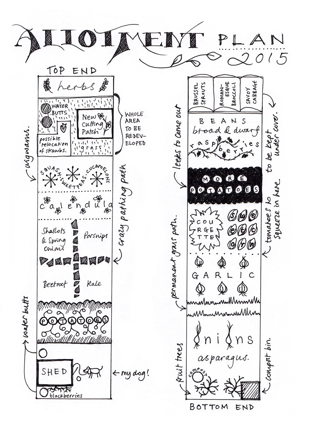 Allotment Layout Plan Google Search