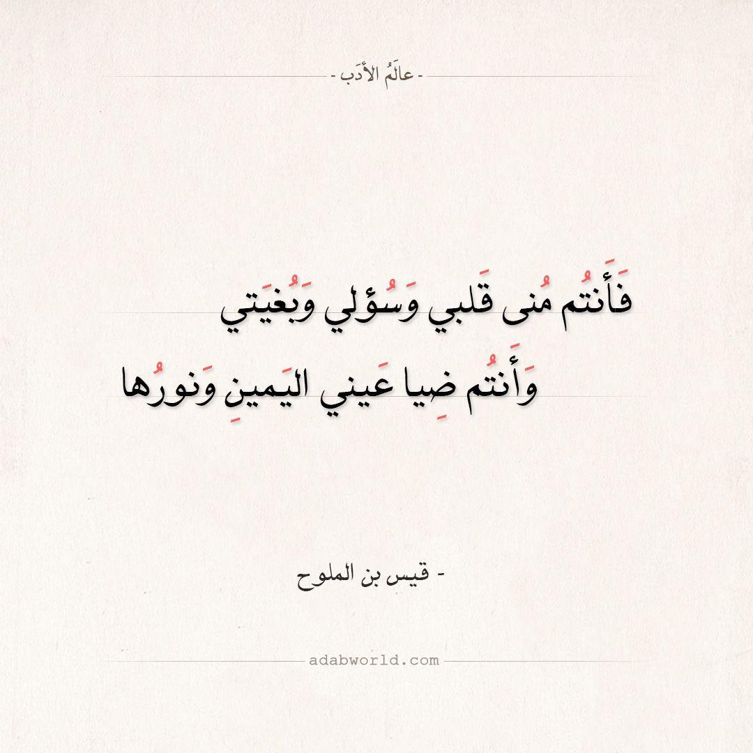 شعر قيس بن الملوح فأنتم منى قلبي وسؤلي وبغيتي عالم الأدب Words Quotes Quotes For Book Lovers Quote Posters