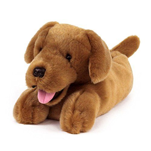 Golden Retriever Dog Slippers Don T Get Left Behind See This