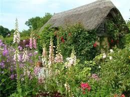 Today my heart lives here... in a happy cottage garden.