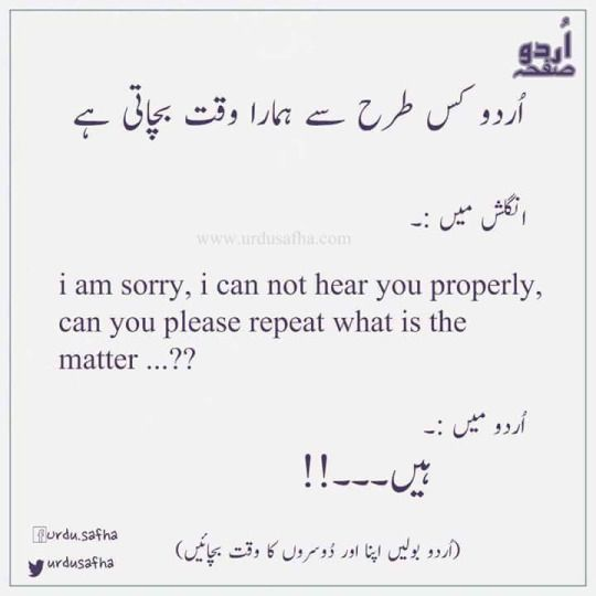 Urdu Hai Jiska Naam Urdu Funny Quotes Fun Quotes Funny Cute Funny Quotes
